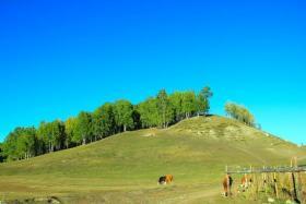 如风营销:美丽神往的禾木草原