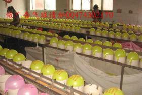 如风营销:雄安新区特色产业介绍--雄县大步村乳胶玩具气球